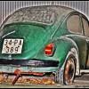 Yaşlı kaplumbağa (Hdr)