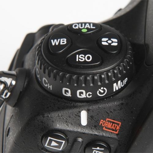 Nikon-4.jpg