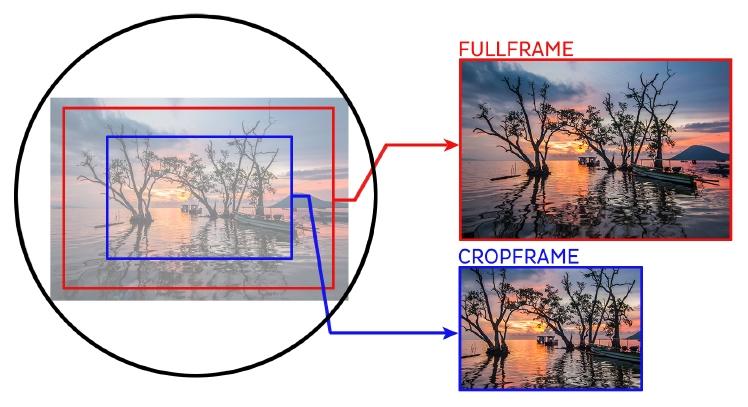 Fullvsapsc-2.jpg.f76b354edb410f77eecd70fb7ef952ae.jpg