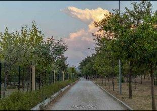 İzmir Kent Ormanı